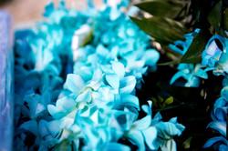 Alohaislandweddings.com- Ohana Oahu wedding-3