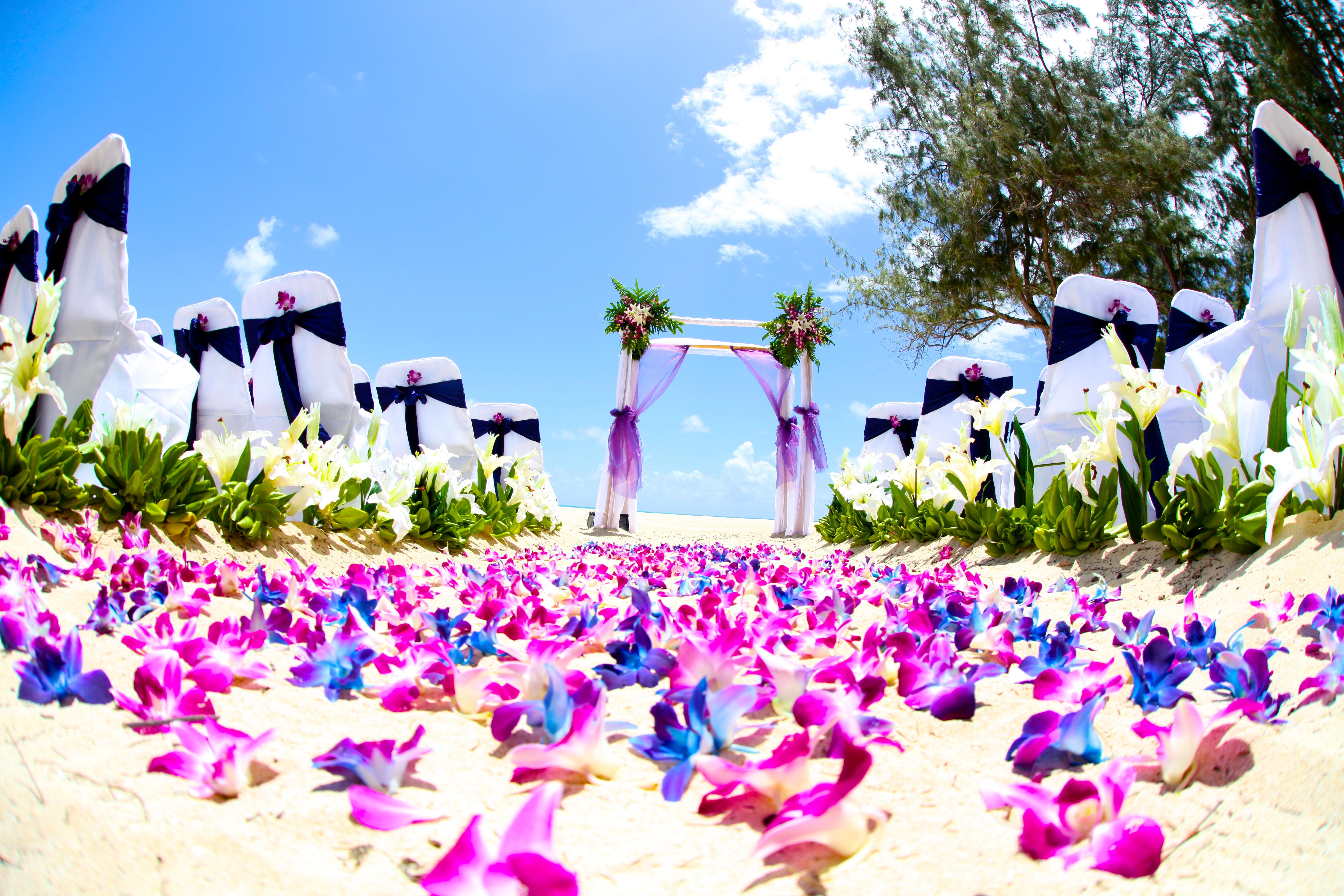 Orchid wedding in Hawaii4