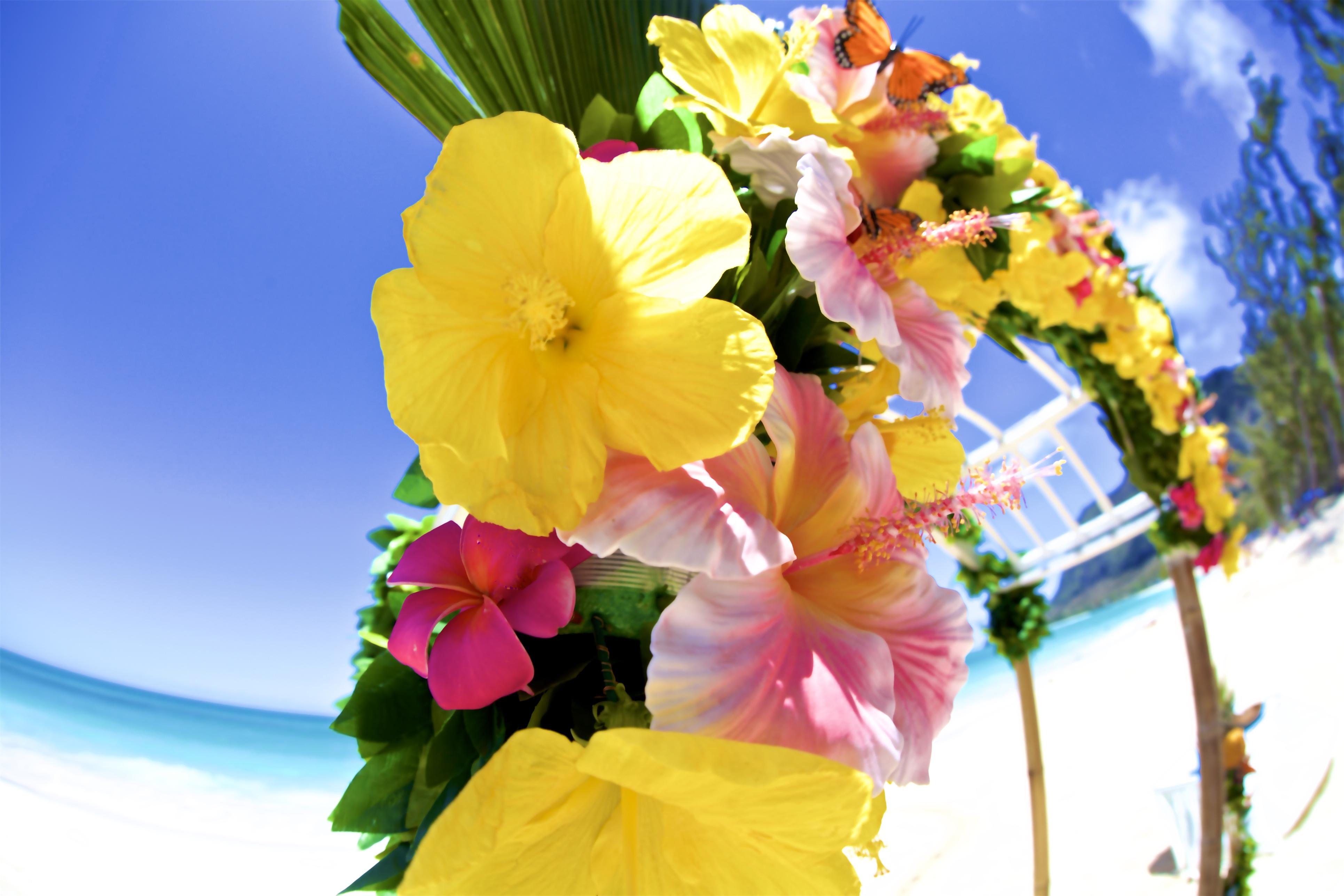 Hawaii weddings, elopements, and Hawaii vow renewals -8