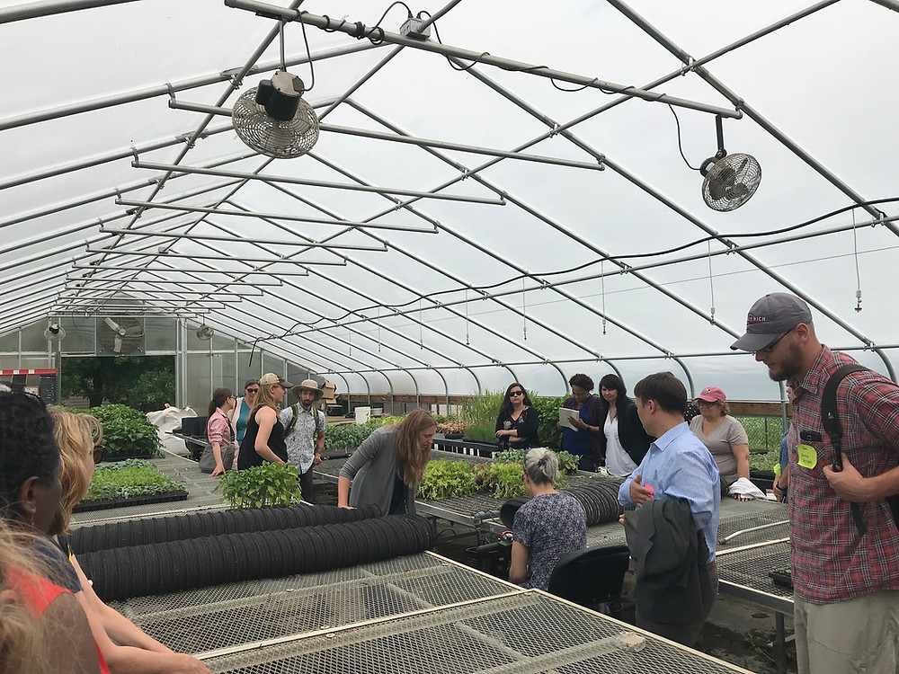 Touring the greenhouse at the Shakopee Mdewankaton Sioux Community farm
