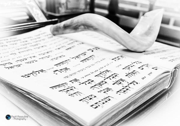 ספר תורה בבית הכנסת, צילום פזית אסולין