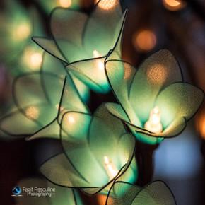 צילום מנורות בעבודת יד