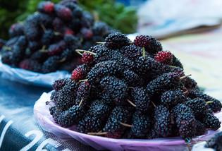 פירות יער טריים