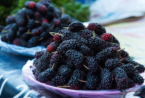 פירות יער, צילום מזון: פזית אסולין