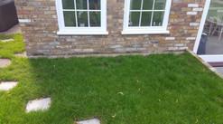 ascot-extension-grass.jpg