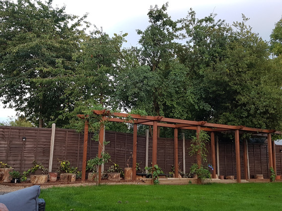 Chessington-Surrey-after-pergola.jpg