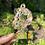 Thumbnail: Key Chain