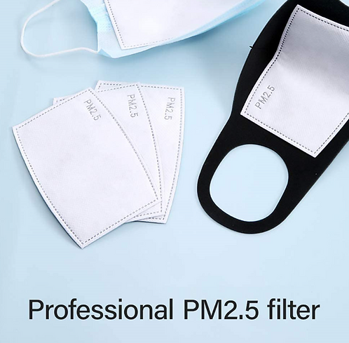 Pm 2.5 Filters - 2pc