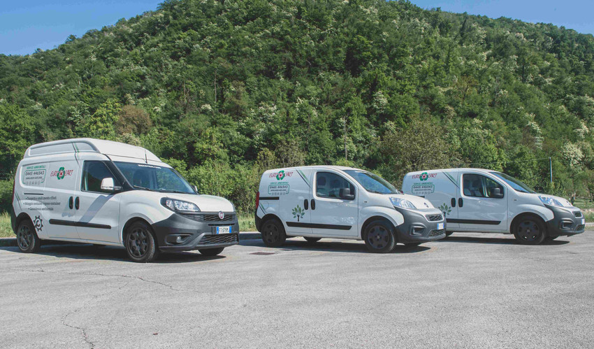 foto assistenza furgone euro-cart traspo