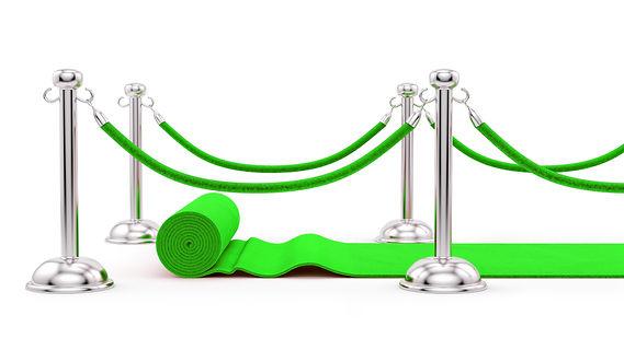 AdobeStock_57054355.jpg_lime Green.jpg