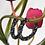 Thumbnail: Argolas Noir Luxury
