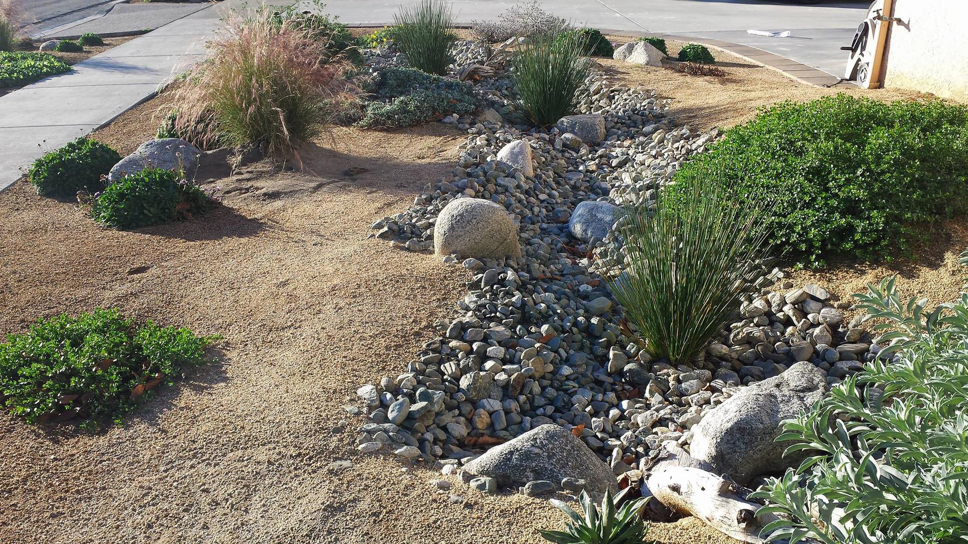 Anaheim Garden Creekbed.jpg