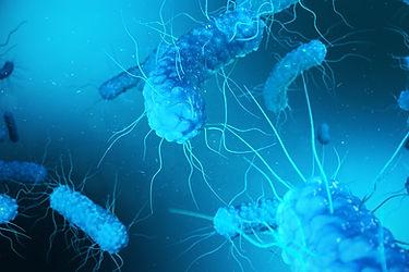 bigstock--d-Rendering-Enterobacterias--2