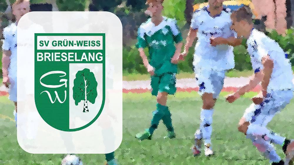 Die WGW unterstützt den SV Grün-Weiss Brieselang