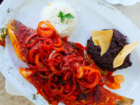 Best tips to know and taste Mexican Yucatecan food?
