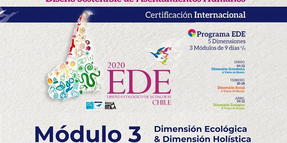 Modulo 3: Dimensión Ecológica & Sistémica-Holística