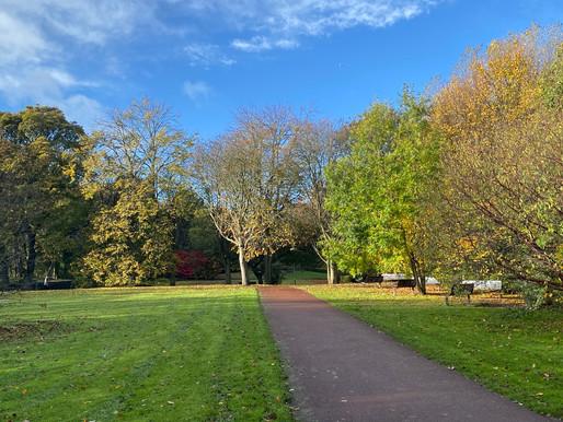 The Park Wor Garden Backs Onto