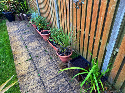 Planters Ready for Spring