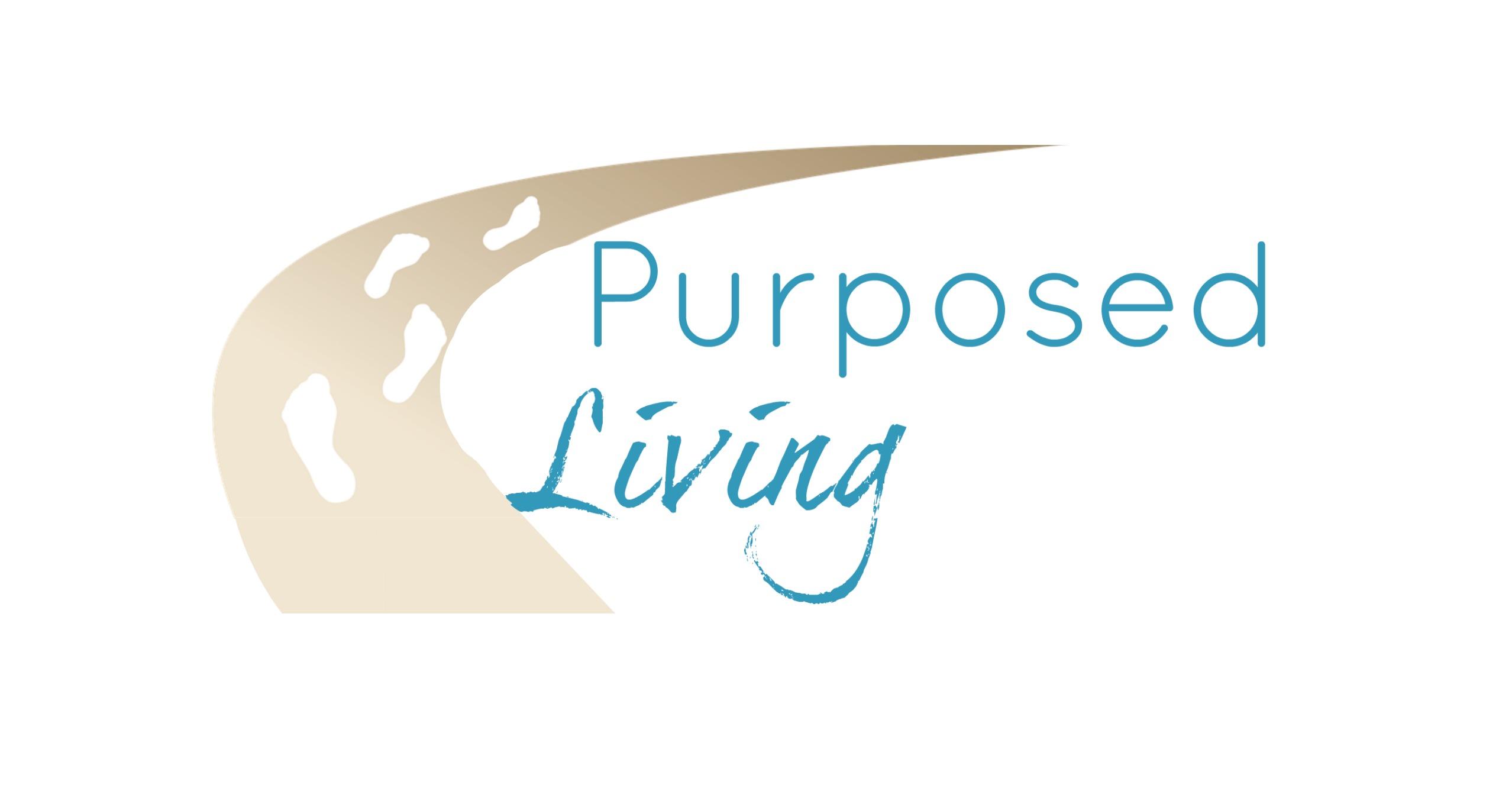 Logo Website PL