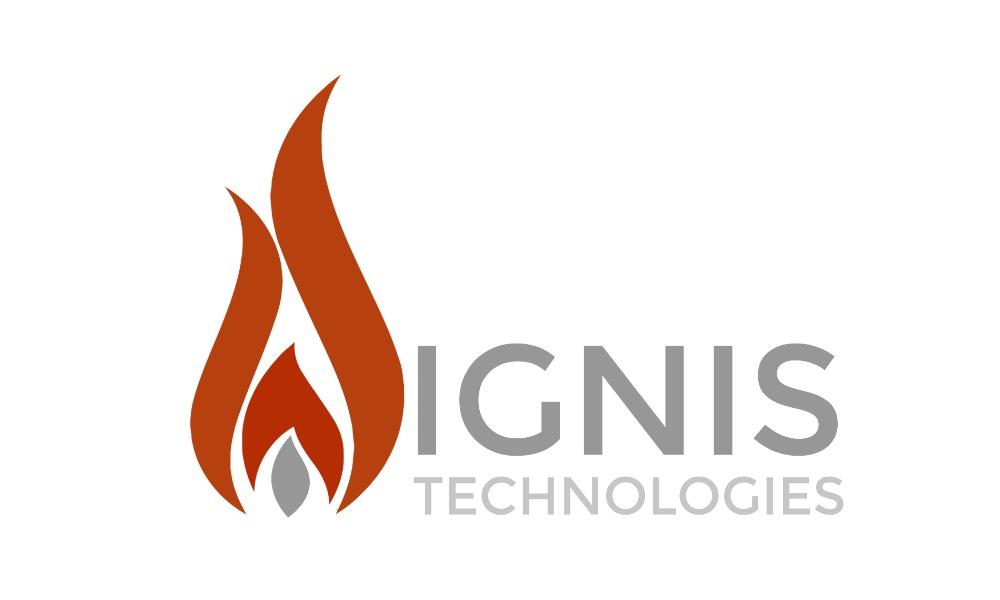 Logo IT Website