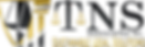 TNS Logo BIG CURRENT W_O Gavel Gradient2