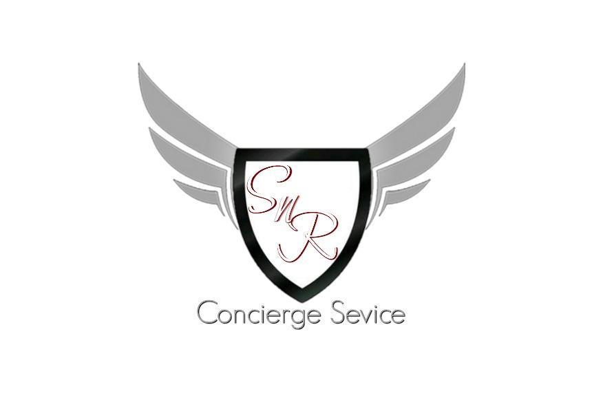 Website Logo SnR
