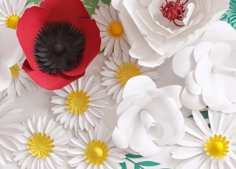 Blanc & Rouge 518.jpg