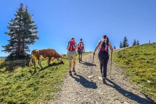 wanderer-unterwegs-zur-wiegalm-in-brixen