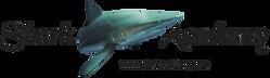 logo_sharkacademy_sivettorialecorelcomtr