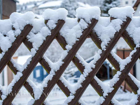 Ein Lob auf den Schnee