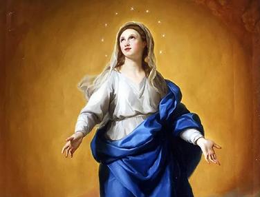 Immaculata.webp