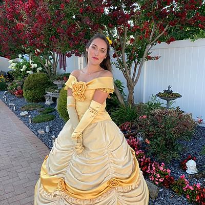 The Enchanted Rose Princess