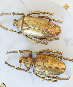 gold-beetle-wall-decoration-1.jpg