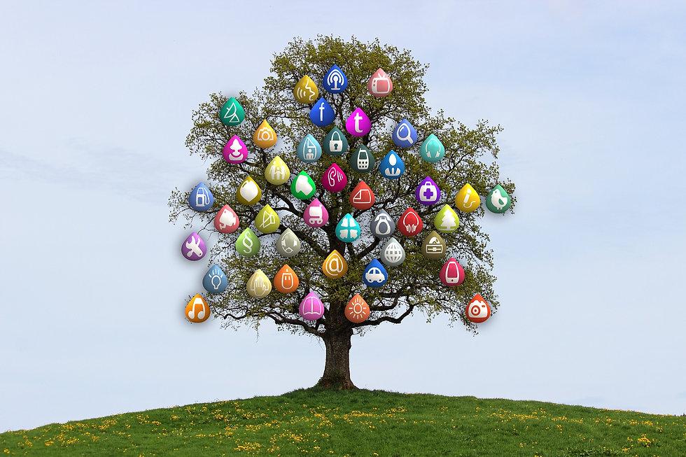 tree-834130_1920.jpg