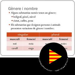 El Substantiu - Nombre (e)