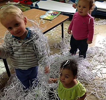 shredded paper.png