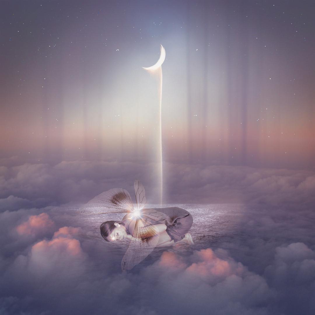 Fairy Dreams Large.jpg