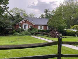 Wedgewood Storm Damage -UPDATE
