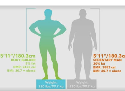 BMI or BCA- What's the difference?