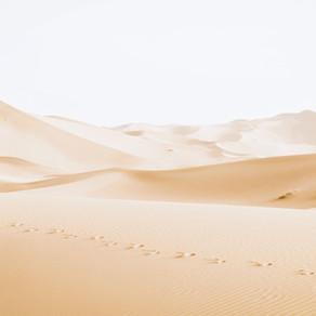 Chapter 17: The Western Desert of Egypt