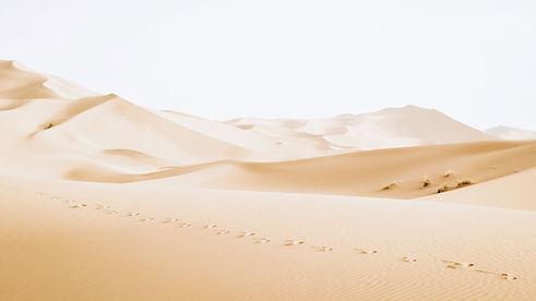 Dunas del desierto