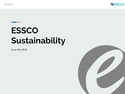 ESCO Sustainability WG report.png