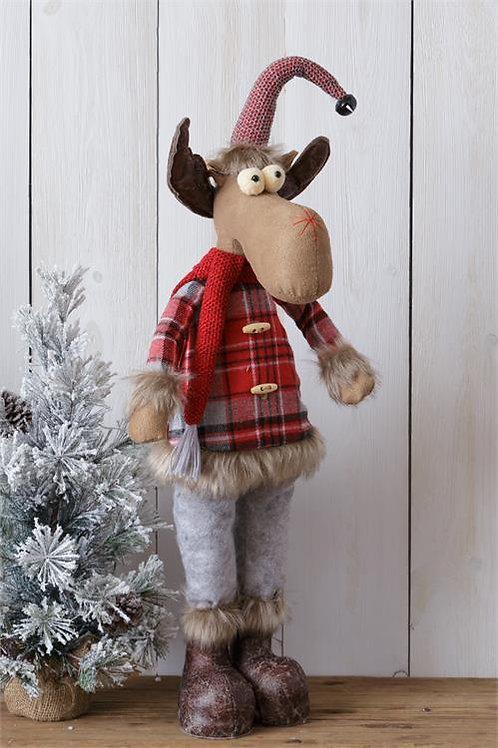 Moose - Standing