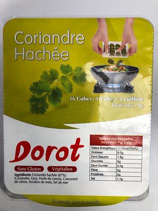 Coriandre dorot (pessah)