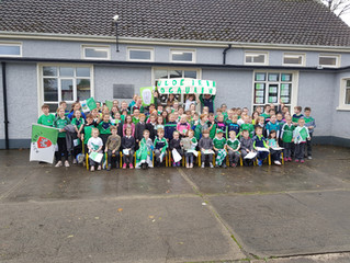 Liam Mc Carthy Visits St. Molua's