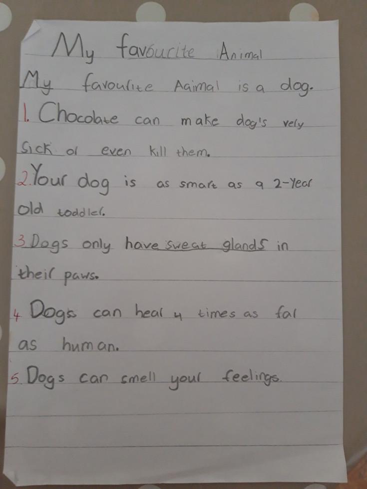 Evan's animal facts