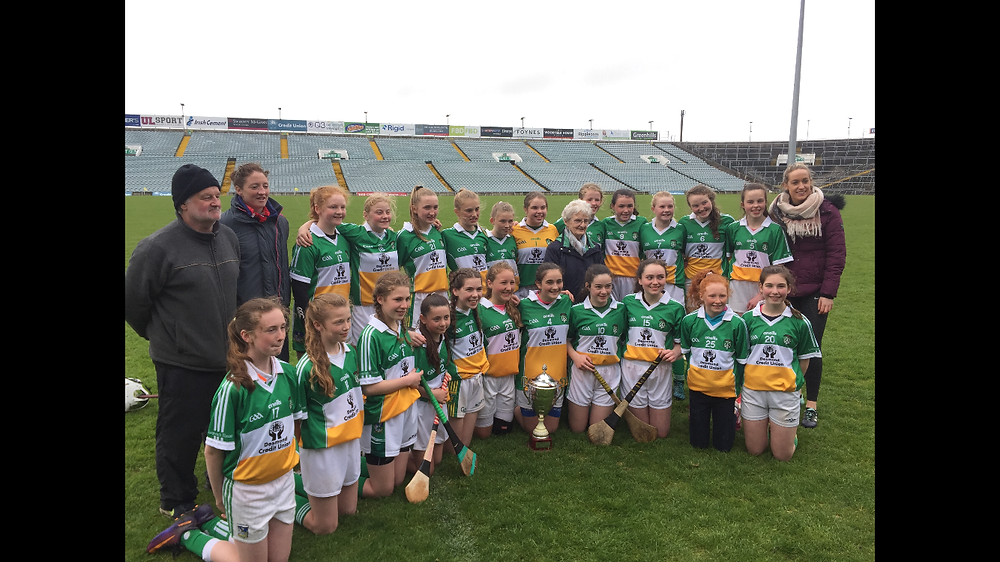 The victorious West Limerick squad and coaches.