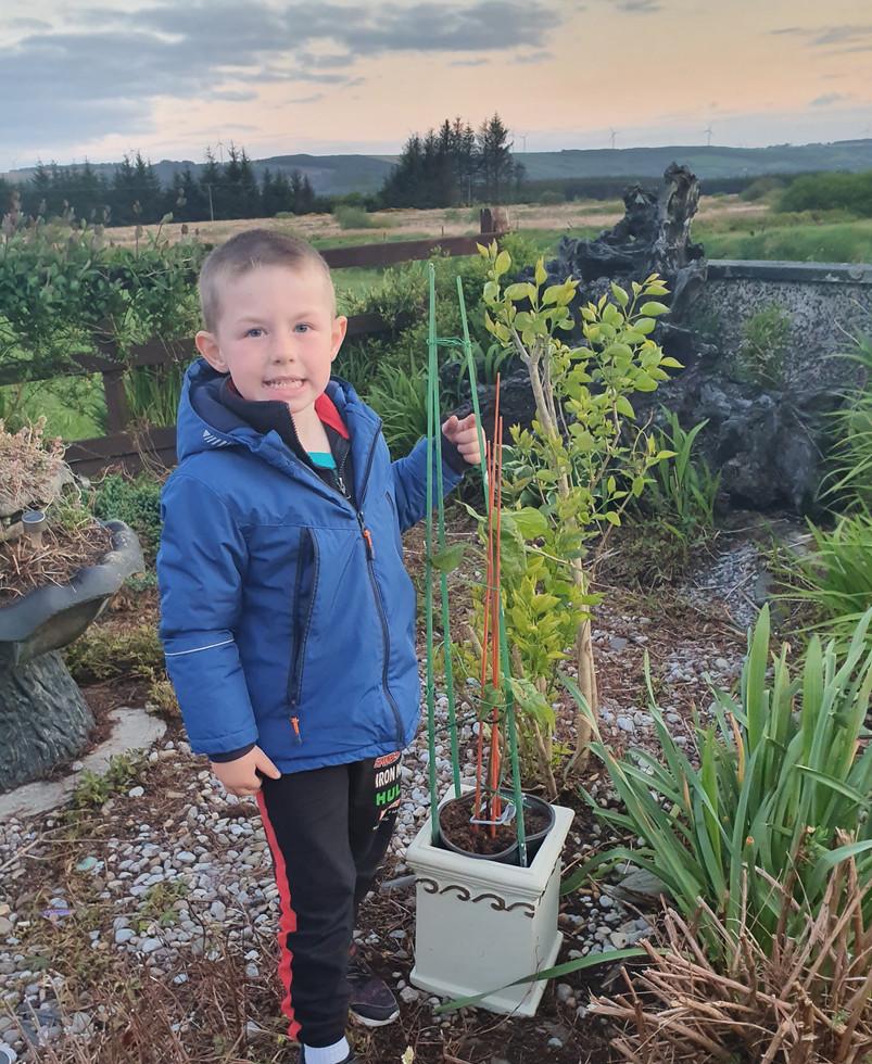Leyton planting his sunflower plant