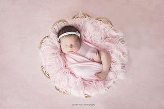 chester-county-newborn-pink-basket.jpg