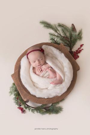 chester-county-newborn-pine.jpg